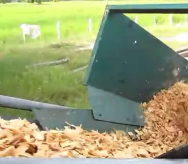 wood debarker and disc wood chipper for cleaning chips inThailand